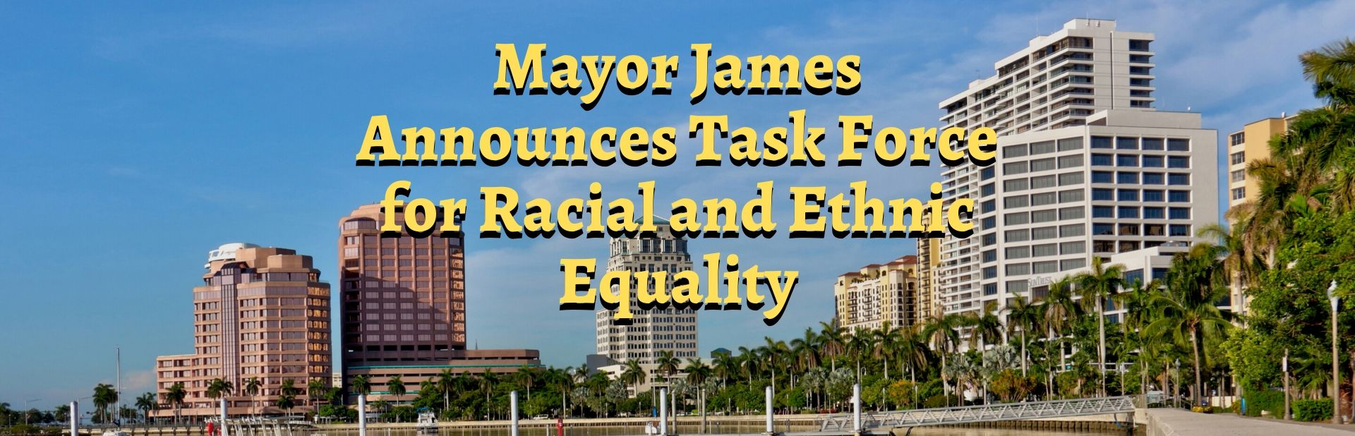 Mayor Equity Task Force 2