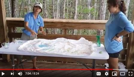screenshot of tabletop watershed activity video